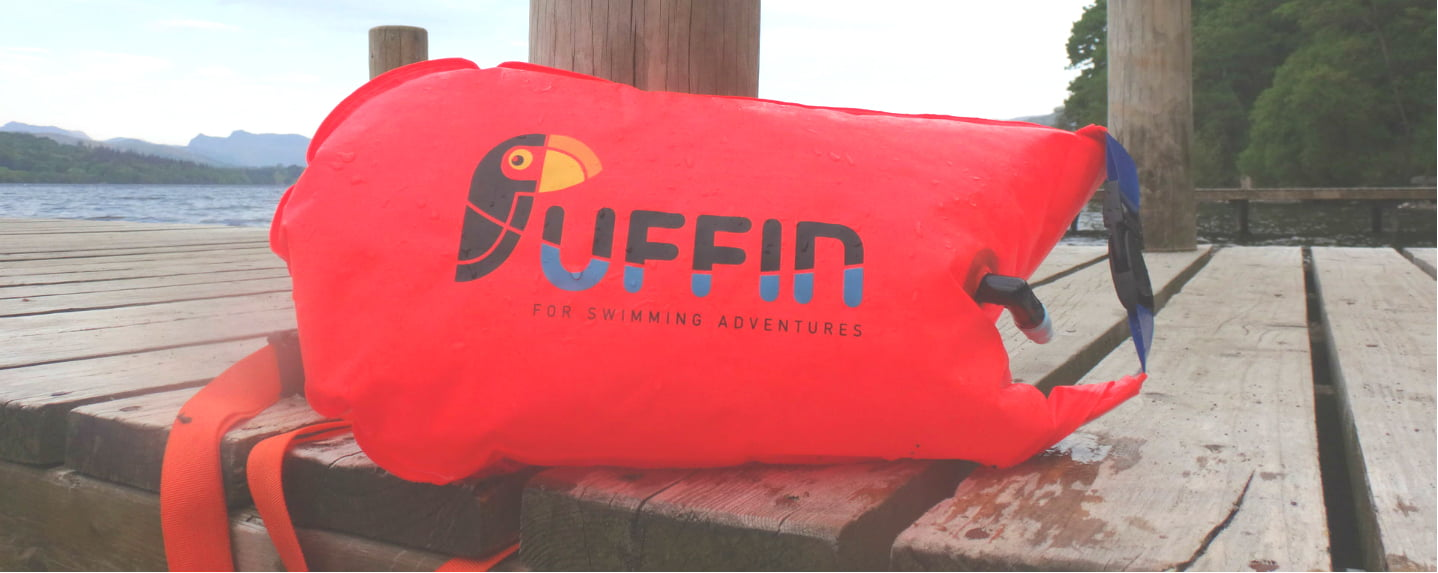 puffin-on-jetty